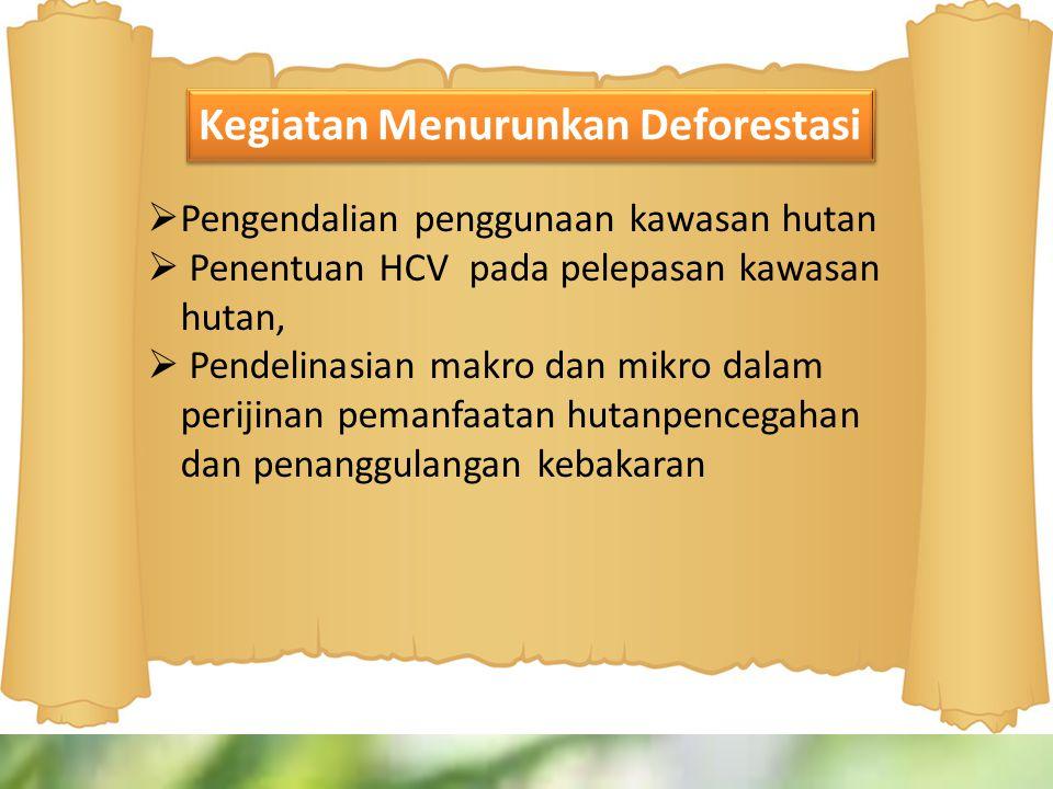 Kegiatan Menurunkan Deforestasi