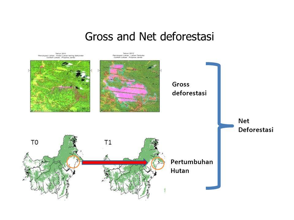 Gross and Net deforestasi