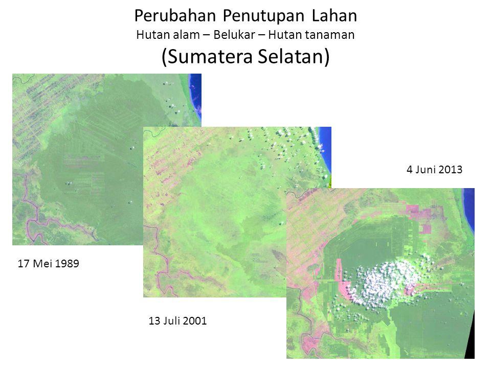 Perubahan Penutupan Lahan Hutan alam – Belukar – Hutan tanaman (Sumatera Selatan)