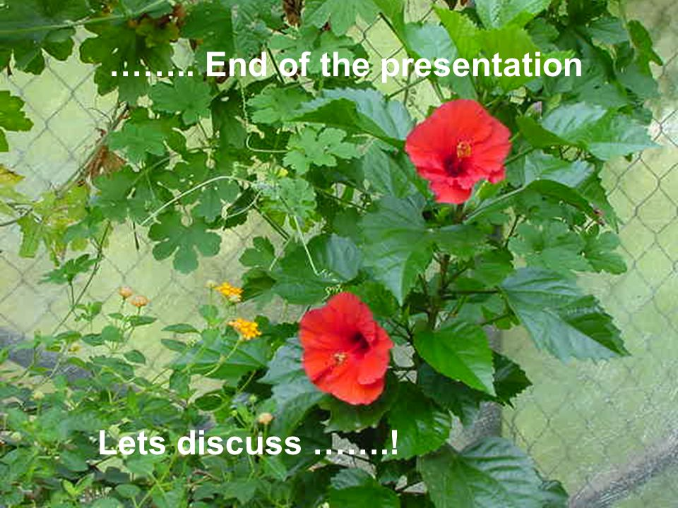 …….. End of the presentation