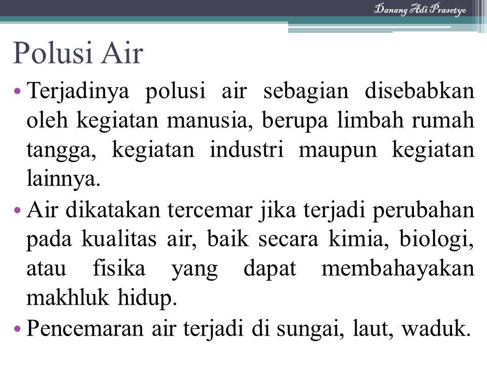 Danang Adi Prasetyo Polusi Air.