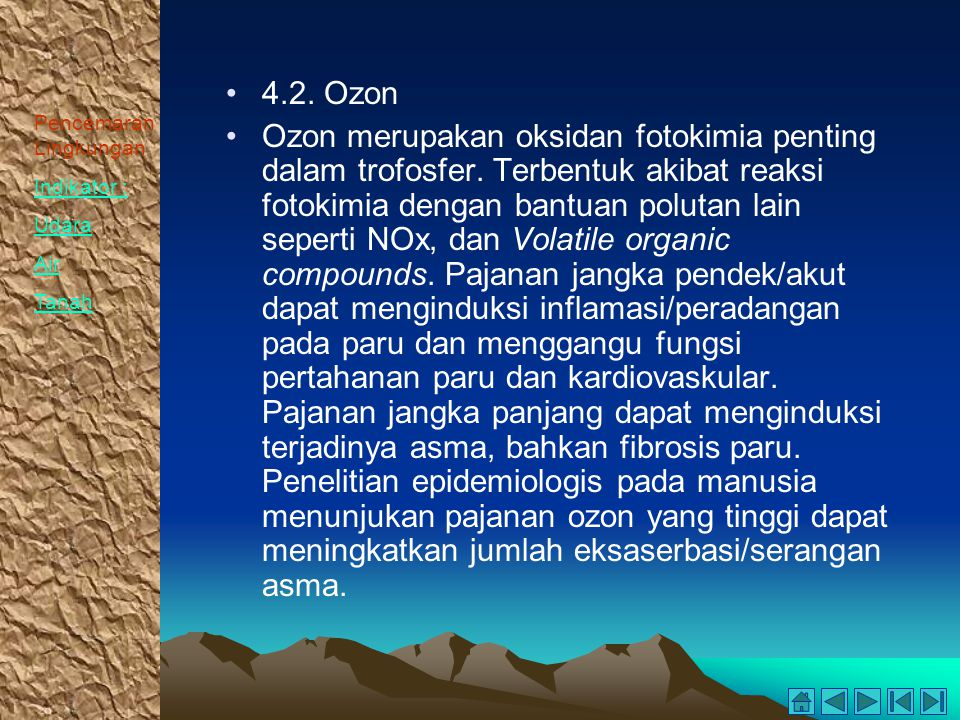 4.2. Ozon
