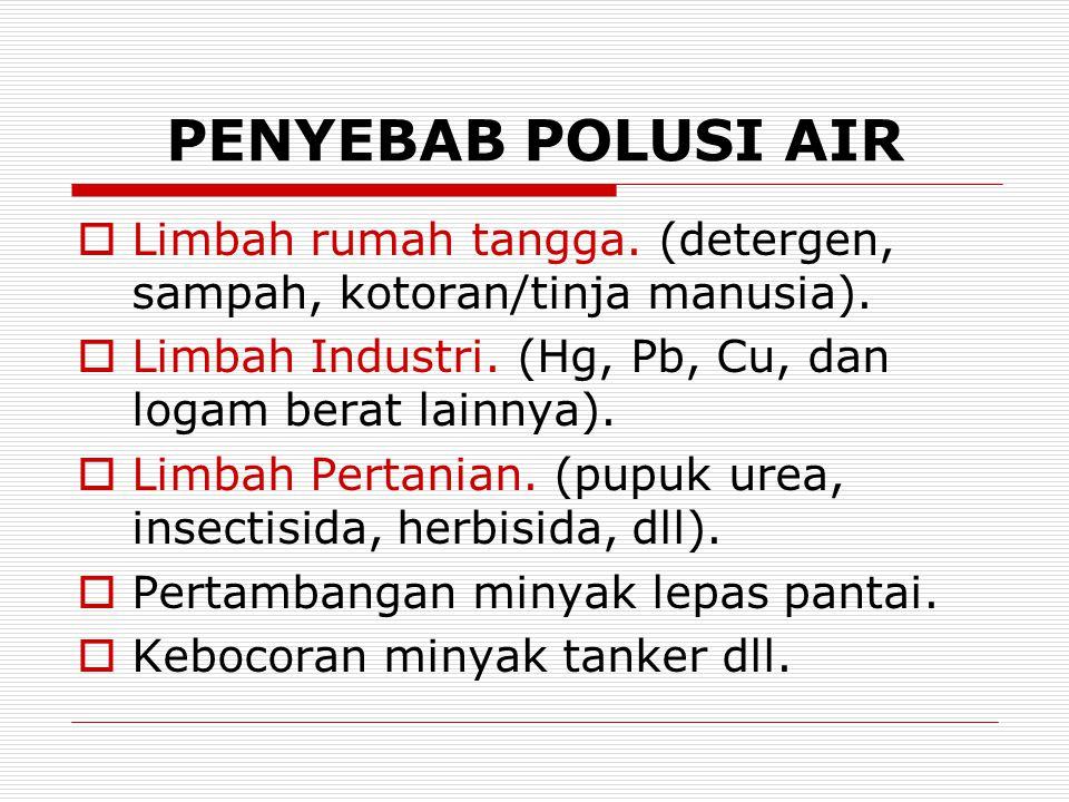 PENYEBAB POLUSI AIR Limbah rumah tangga. (detergen, sampah, kotoran/tinja manusia). Limbah Industri. (Hg, Pb, Cu, dan logam berat lainnya).