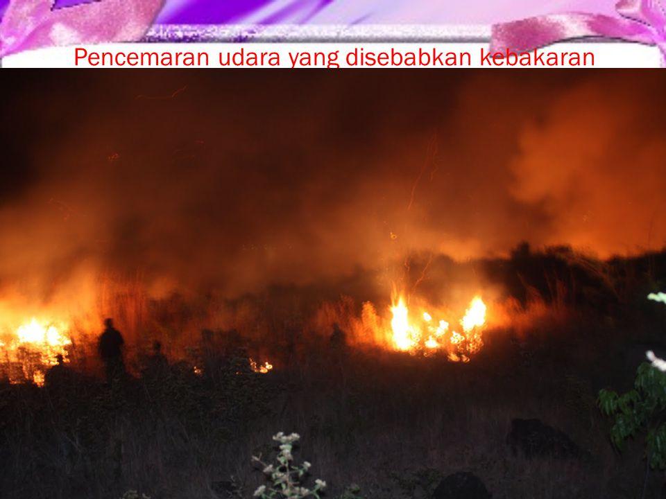 Pencemaran udara yang disebabkan kebakaran