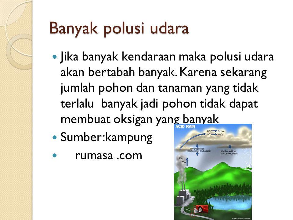 Banyak polusi udara