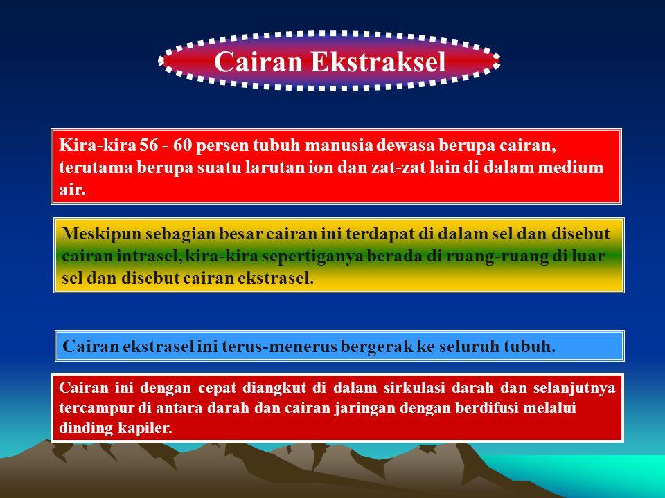 Cairan Ekstraksel