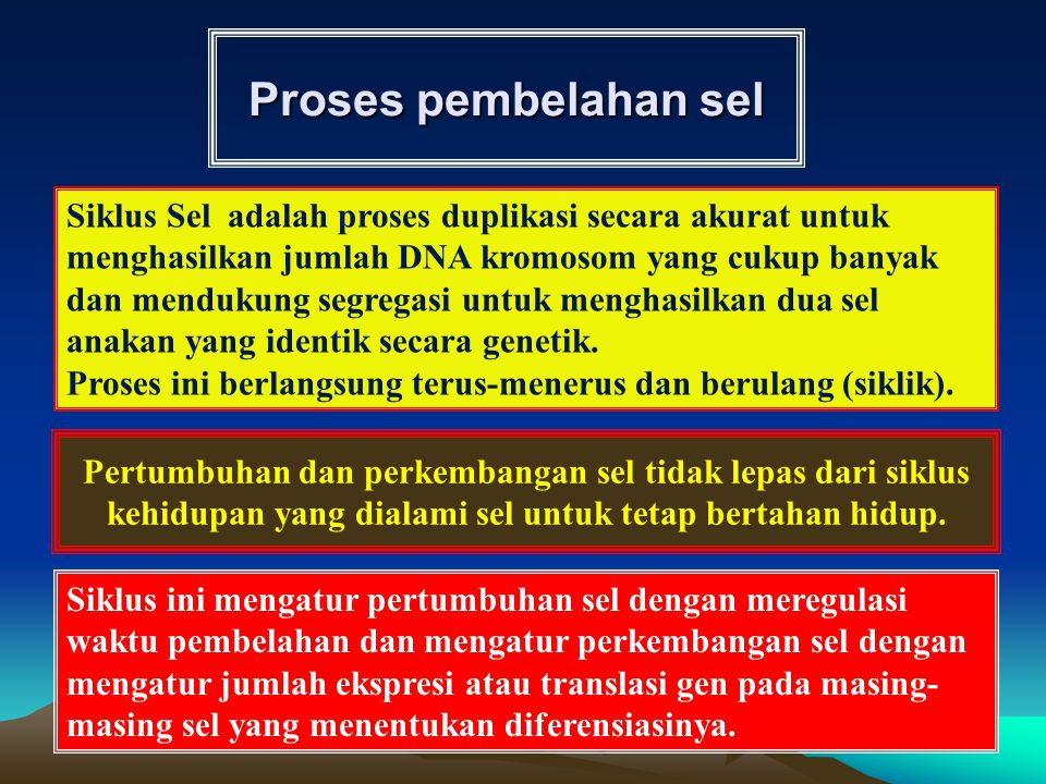 Proses pembelahan sel