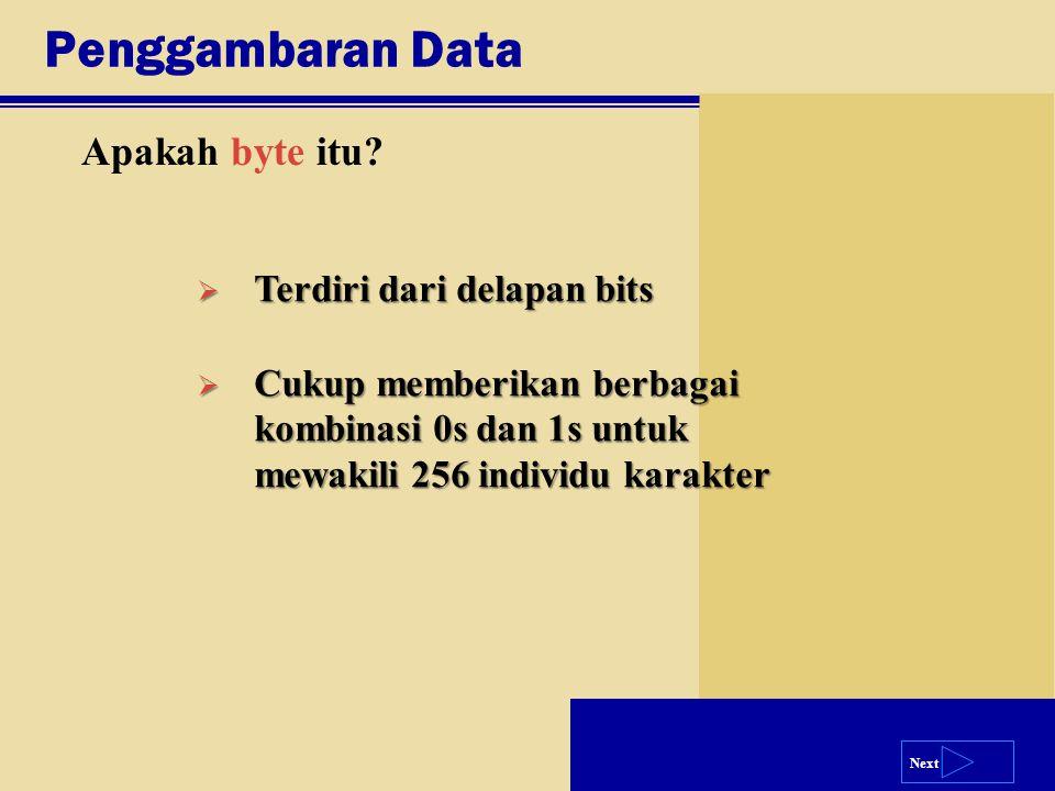 Penggambaran Data Apakah byte itu Terdiri dari delapan bits