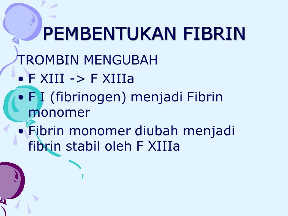 PEMBENTUKAN FIBRIN TROMBIN MENGUBAH F XIII -> F XIIIa