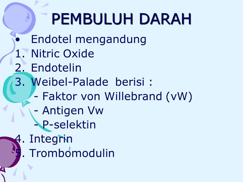 PEMBULUH DARAH Endotel mengandung Nitric Oxide Endotelin