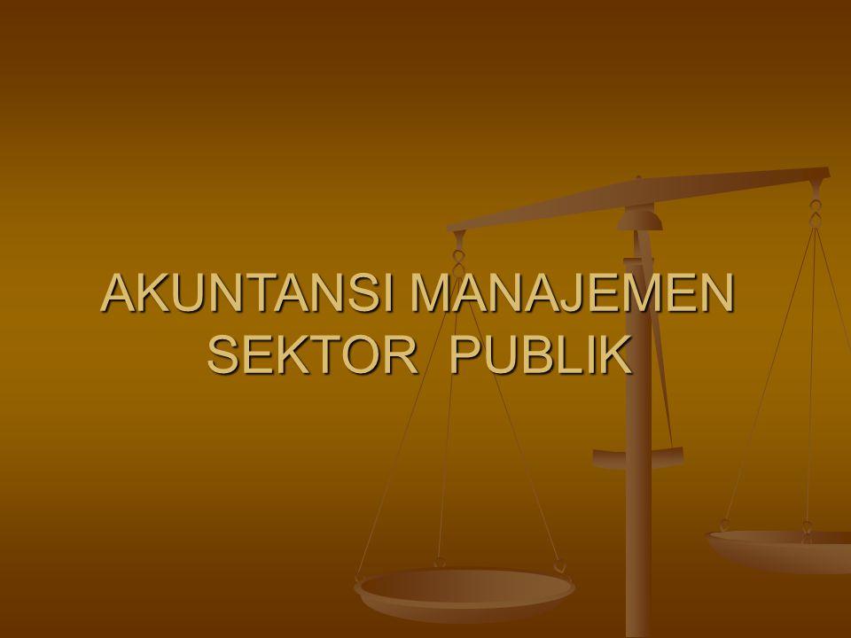akuntasi sektor public essay