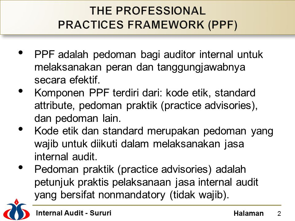 THE PROFESSIONAL PRACTICES FRAMEWORK (PPF)