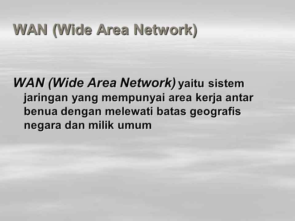 WAN (Wide Area Network)
