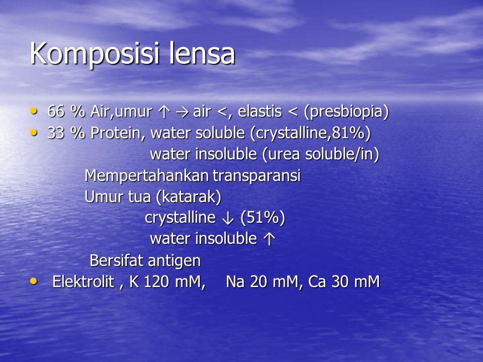 Komposisi lensa 66 % Air,umur ↑ → air <, elastis < (presbiopia)