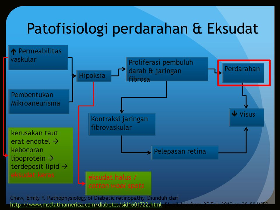 Patofisiologi perdarahan & Eksudat