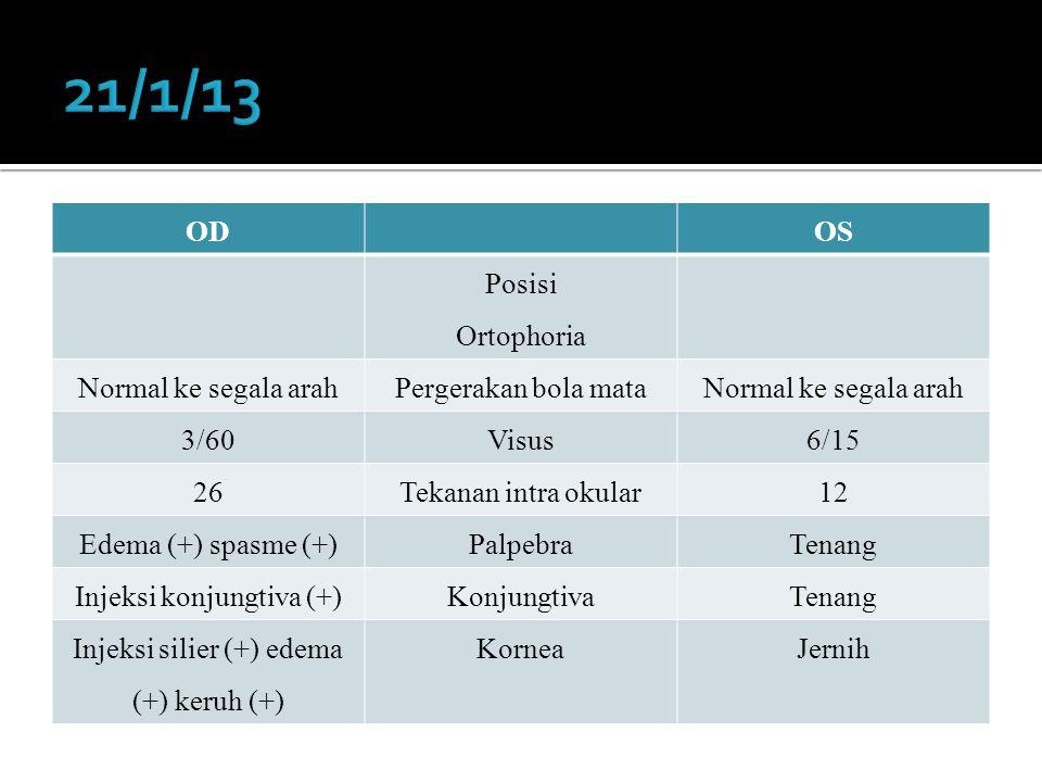 21/1/13 OD OS Posisi Ortophoria Normal ke segala arah