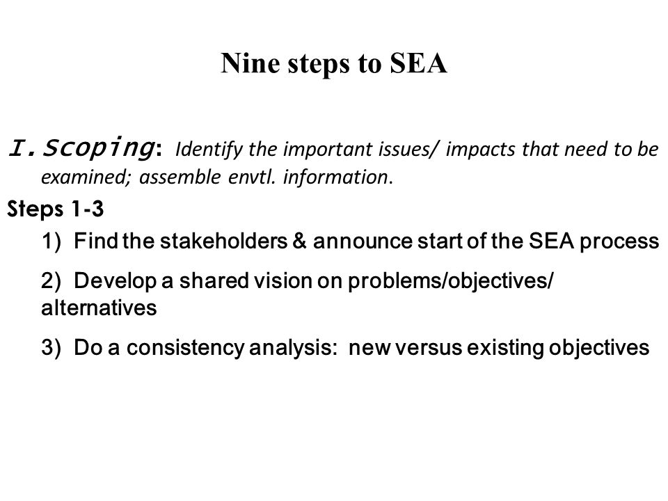Nine steps to SEA Scoping: Identify the important issues/ impacts that need to be examined; assemble envtl. information.