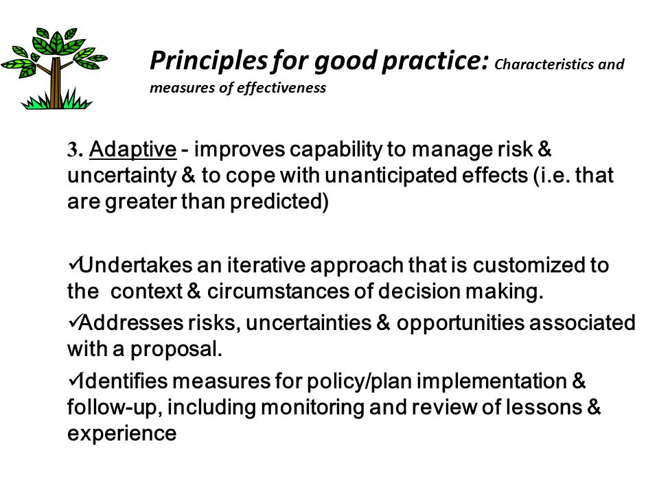Principles for good practice: Characteristics and measures of effectiveness