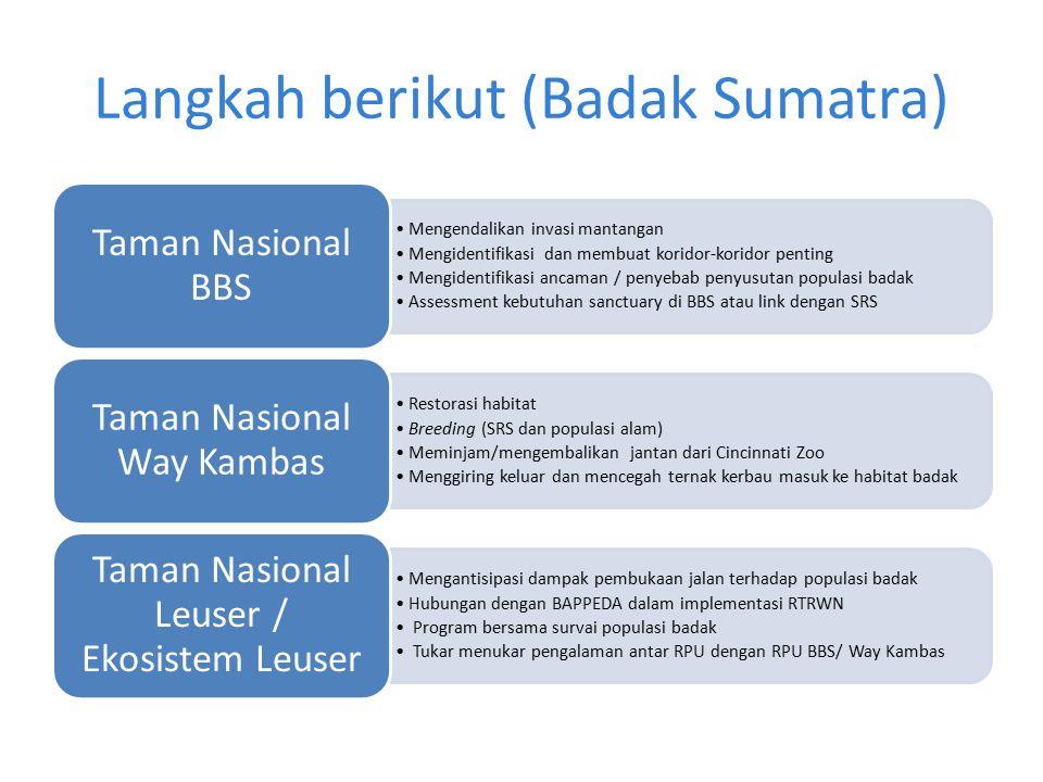 Langkah berikut (Badak Sumatra)