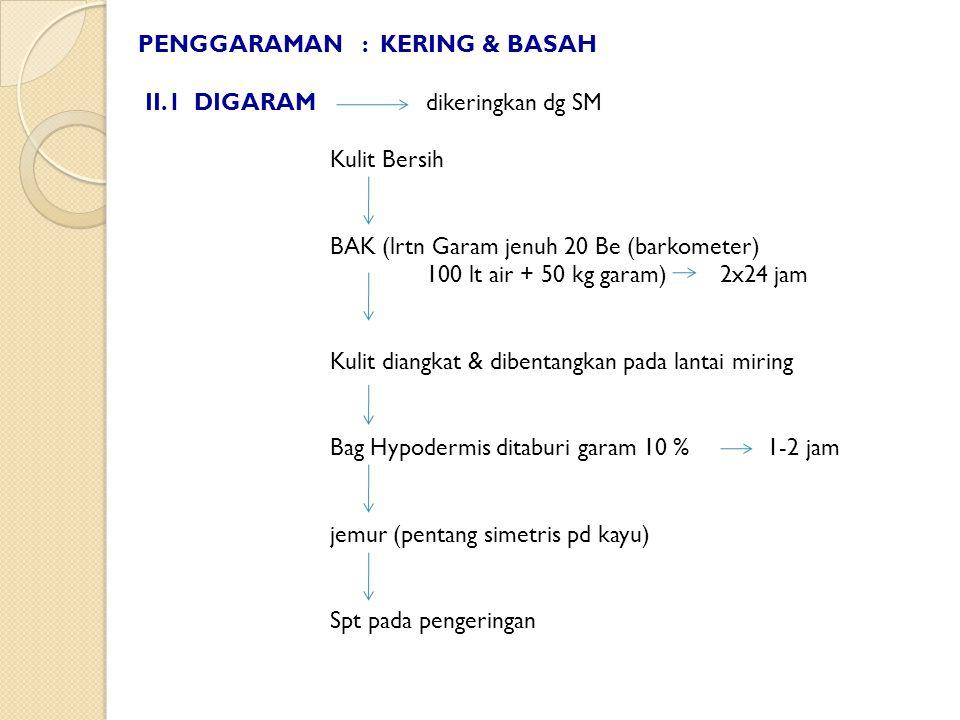 PENGGARAMAN : KERING & BASAH