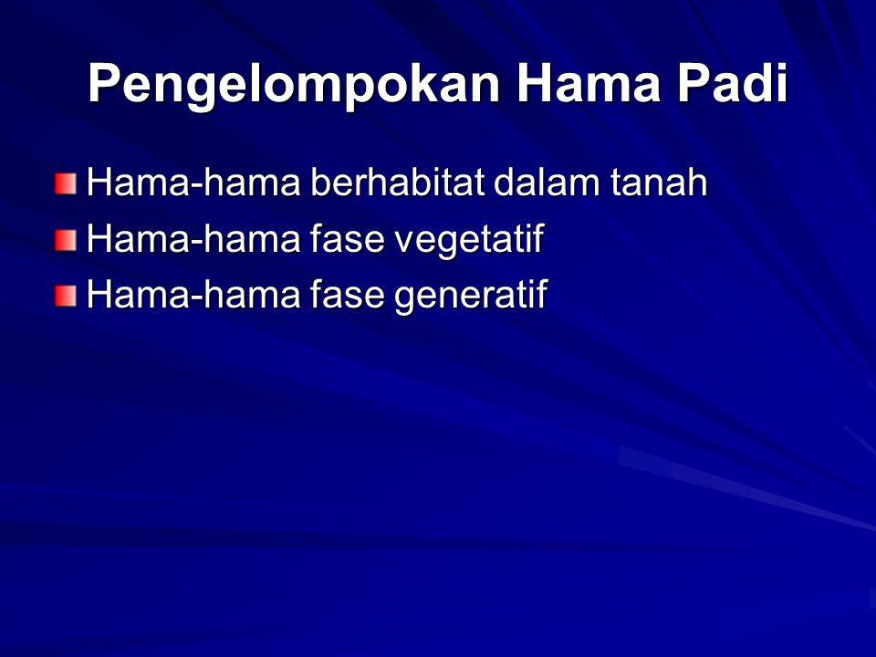 Pengelompokan Hama Padi