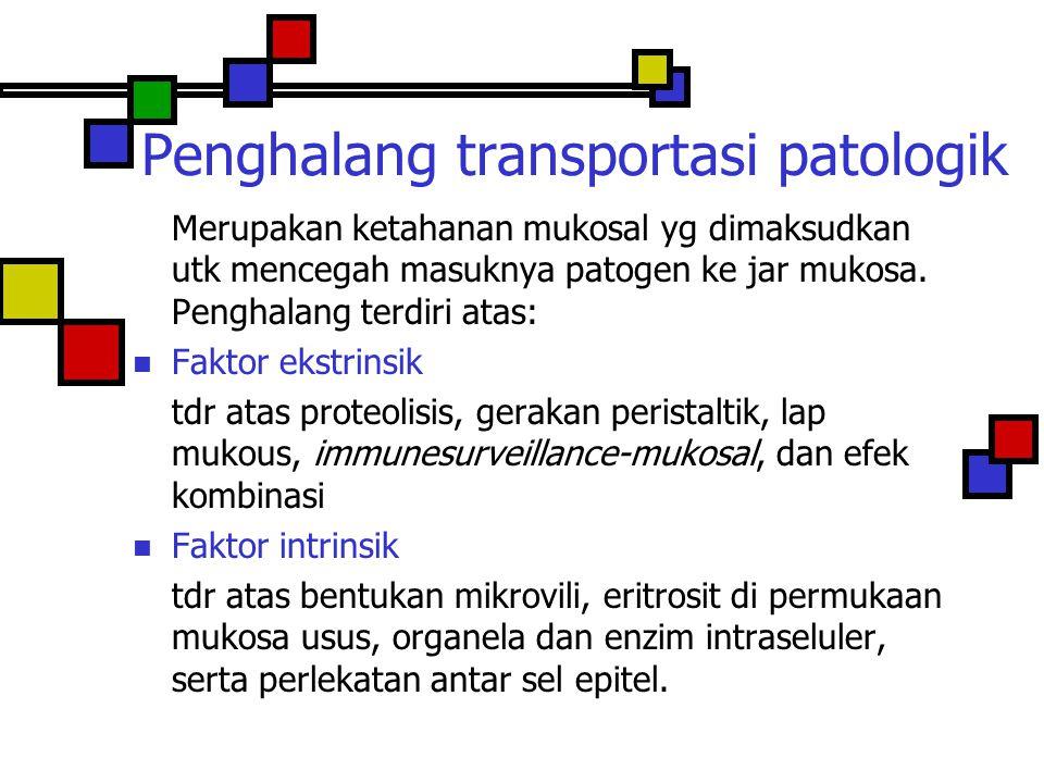 Penghalang transportasi patologik
