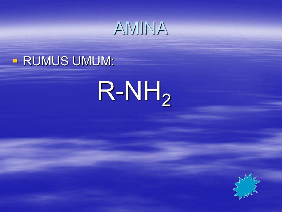 AMINA RUMUS UMUM: R-NH2