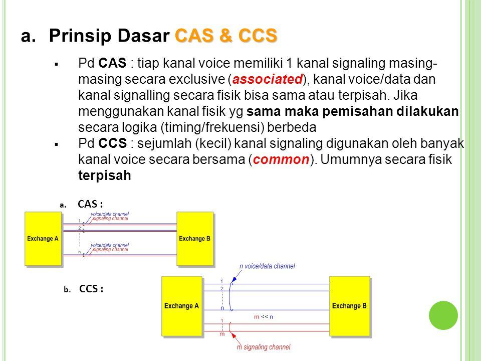 Prinsip Dasar CAS & CCS