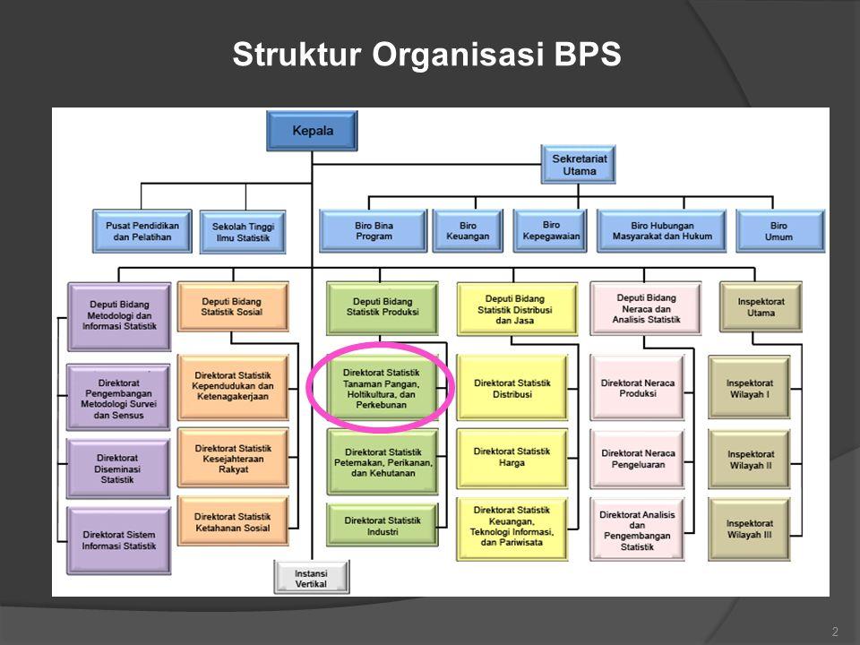 Struktur Organisasi BPS