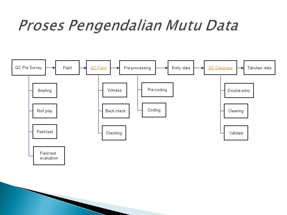 Proses Pengendalian Mutu Data