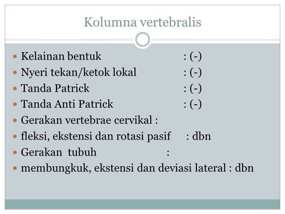 Kolumna vertebralis Kelainan bentuk : (-)