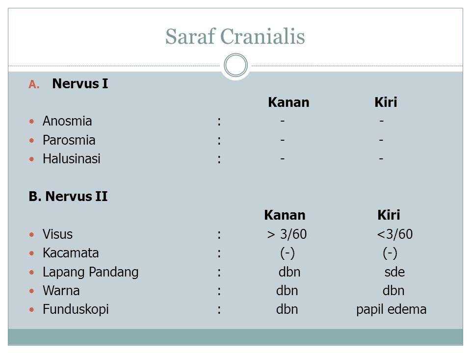 Saraf Cranialis Nervus I Kanan Kiri Anosmia : - - Parosmia : - -