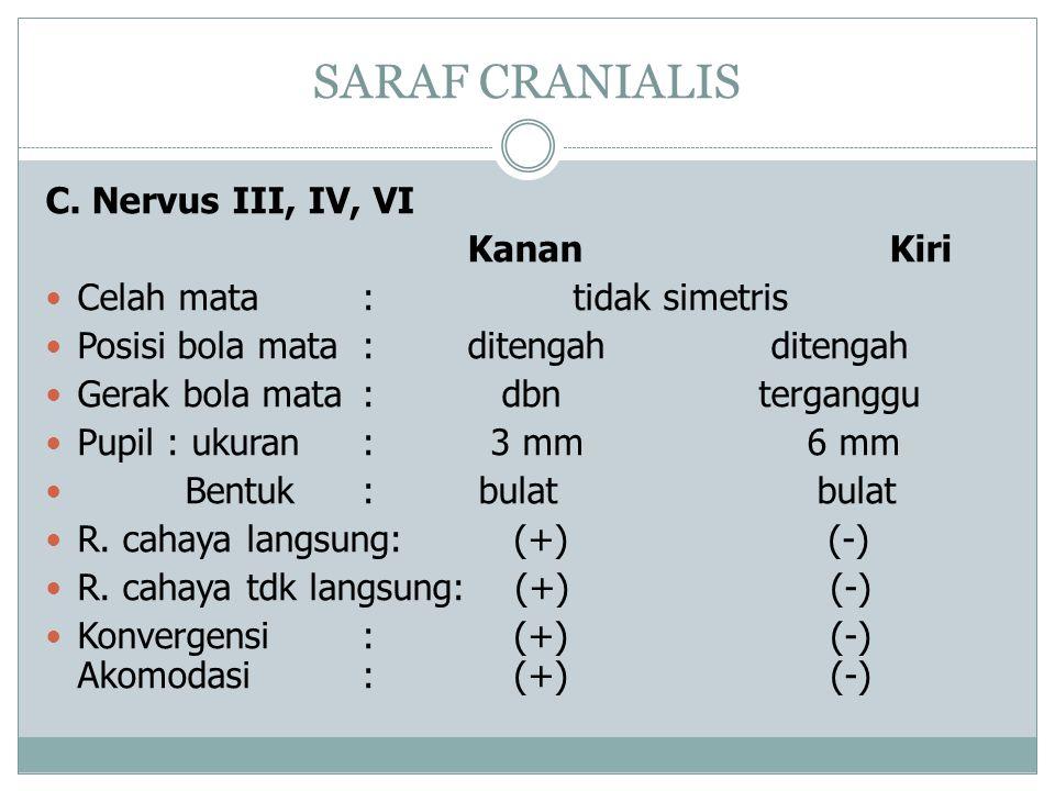 SARAF CRANIALIS C. Nervus III, IV, VI Kanan Kiri