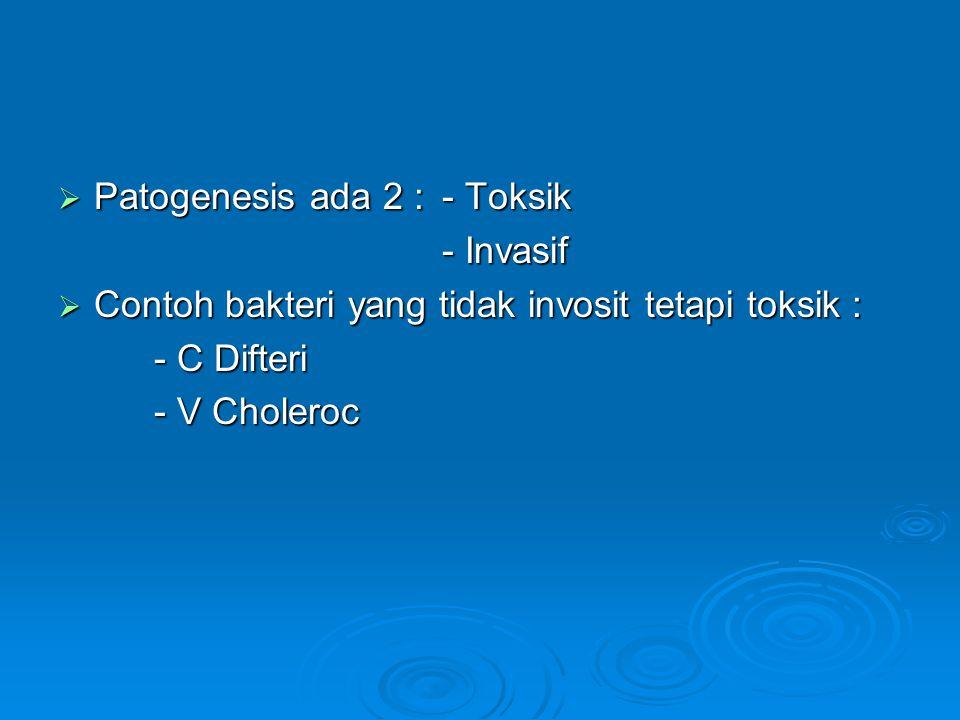 Patogenesis ada 2 : - Toksik