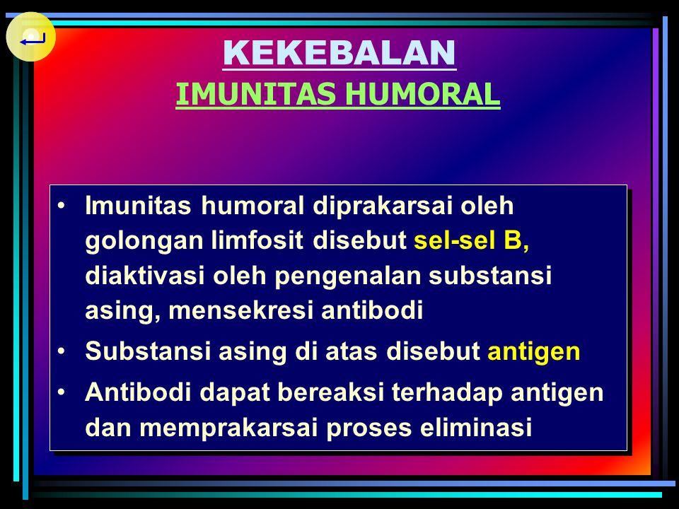 KEKEBALAN IMUNITAS HUMORAL