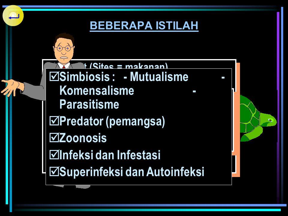 Simbiosis : - Mutualisme - Komensalisme - Parasitisme