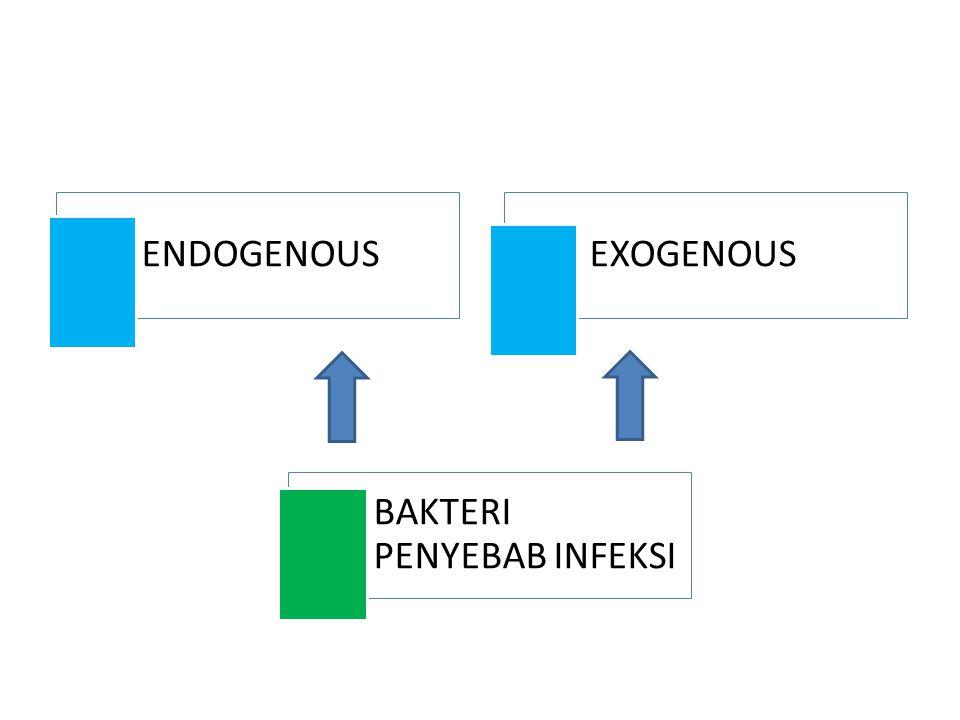 ENDOGENOUS EXOGENOUS BAKTERI PENYEBAB INFEKSI