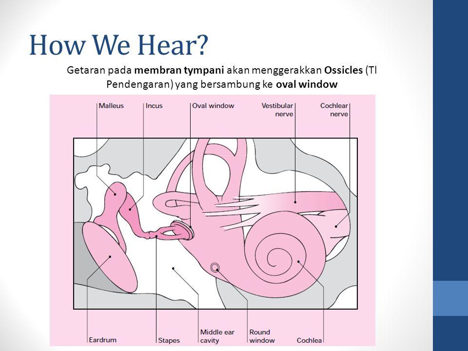 How We Hear.