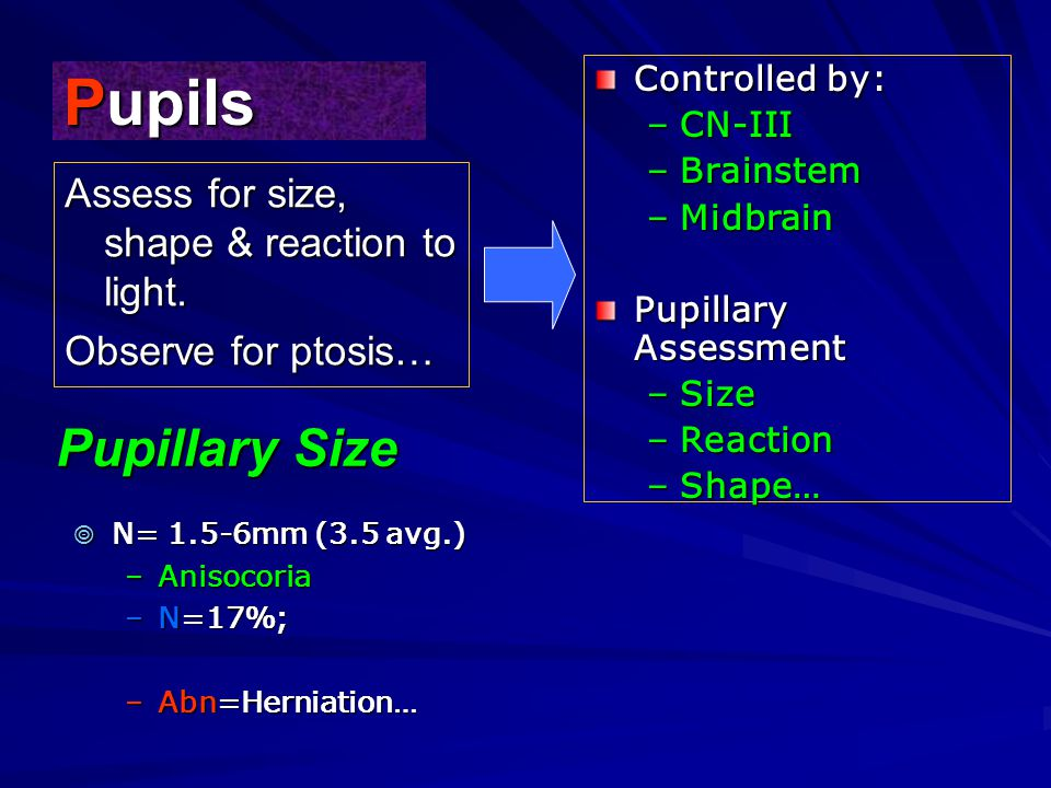 Pupils Pupillary Size Assess for size, shape & reaction to light.
