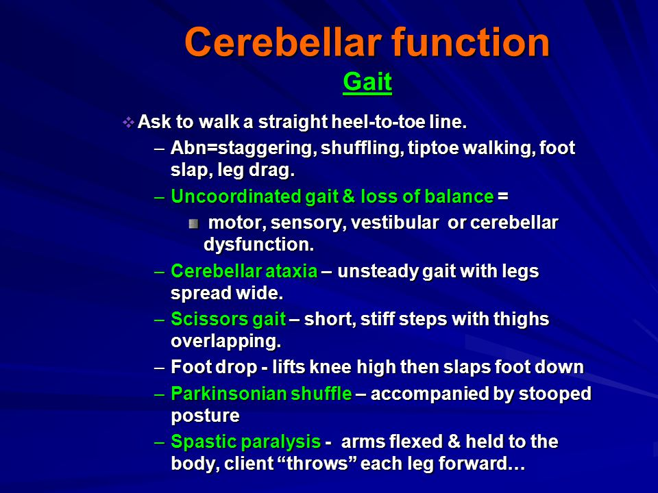 Cerebellar function Gait
