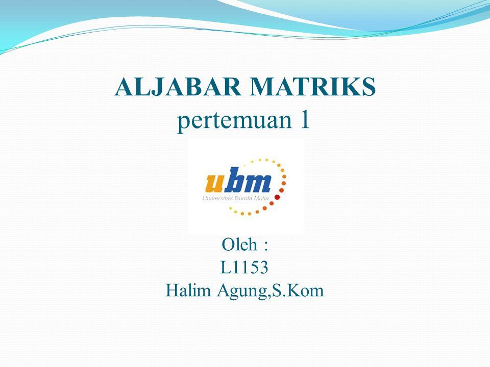 ALJABAR MATRIKS pertemuan 1 Oleh : L1153 Halim Agung,S.Kom