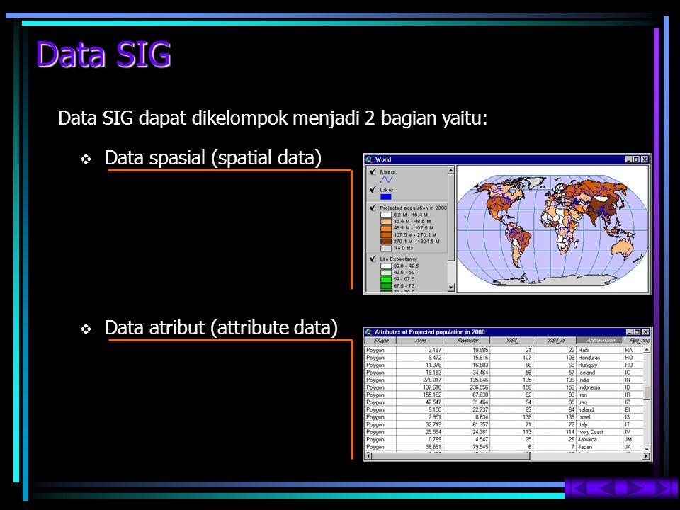 Data SIG Data SIG dapat dikelompok menjadi 2 bagian yaitu: