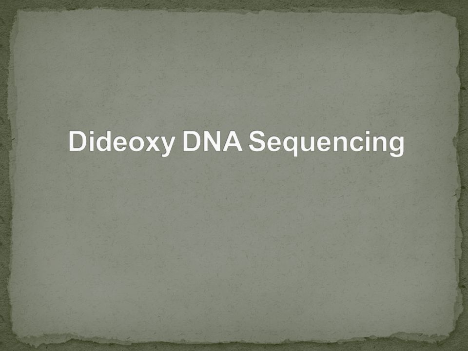 Dideoxy DNA Sequencing