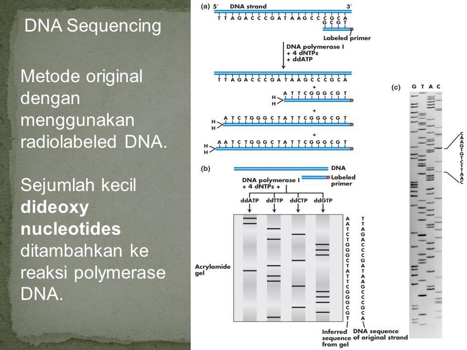DNA Sequencing Metode original dengan menggunakan radiolabeled DNA.