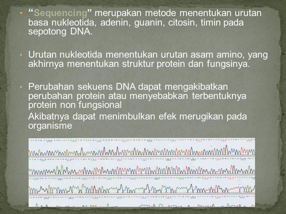 Sequencing merupakan metode menentukan urutan basa nukleotida, adenin, guanin, citosin, timin pada sepotong DNA.