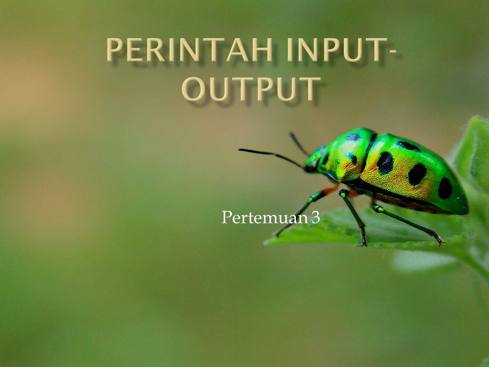 Perintah Input-OutPut