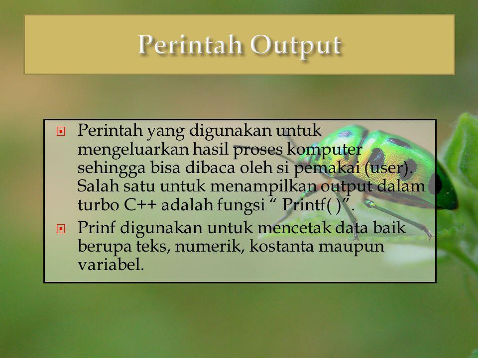 Perintah Output
