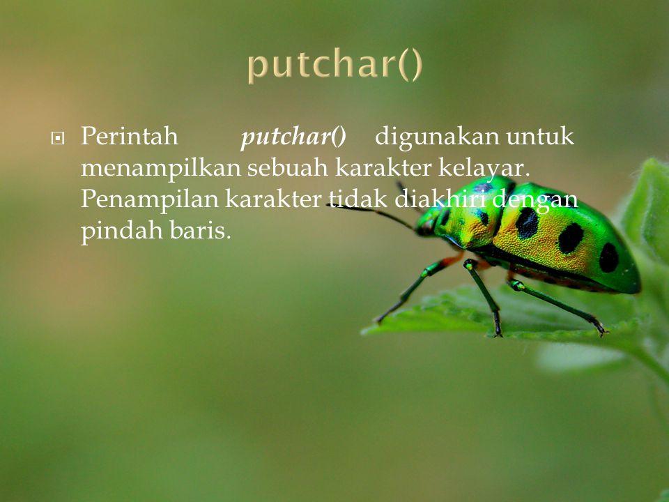 putchar() Perintah putchar() digunakan untuk menampilkan sebuah karakter kelayar.