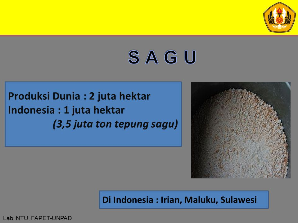 S A G U Produksi Dunia : 2 juta hektar Indonesia : 1 juta hektar
