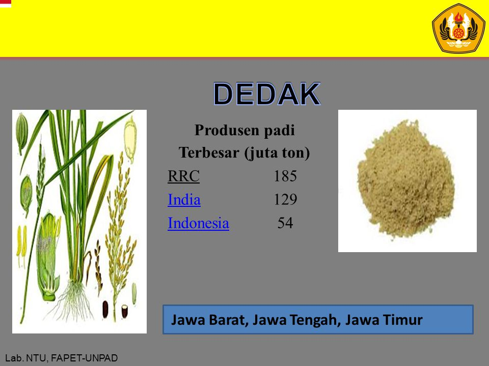 DEDAK Produsen padi Terbesar (juta ton) RRC 185 India 129 Indonesia 54